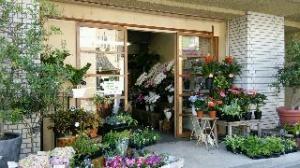サラッと更地になり…|「さくま松花園」 (愛知県名古屋市千種区の花屋)のブログ